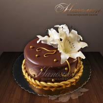 Подарочный торт № 093 Т
