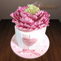 Подарочный торт маме № 116 Т
