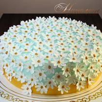 Торт с ромашками № 282 Т